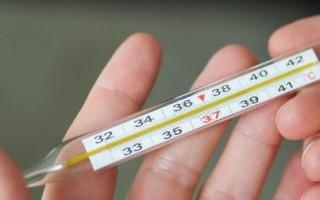 Базальная температура в первом триместре беременности