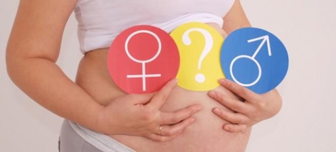 На какой неделе определяют пол ребёнка?