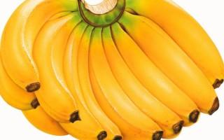 Можно ли бананы при грудном вскармливании?