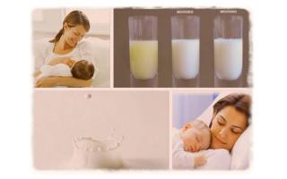 Когда приходит молоко после родов?